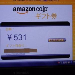 足かけ3年半、Amazon Associatesが やっと収益化しました。驚愕の金額(; ̄Д ̄)