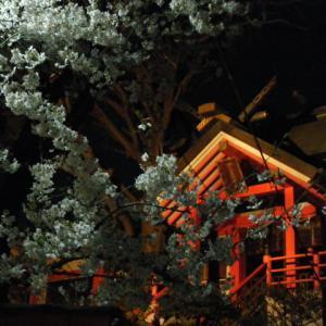 New year Gagaku concert at Otamainarijinja shrine 2019