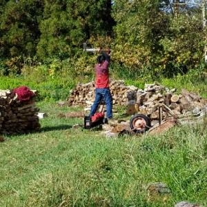 薪割りボラ