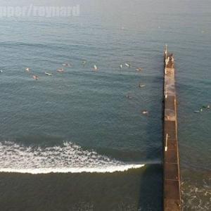 桟橋サーフィン