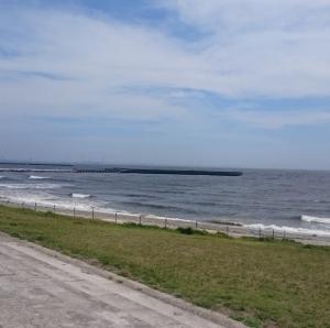 湾岸のうねり