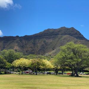 ハワイで散歩
