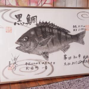 ★クロダイの修正修復魚拓♪