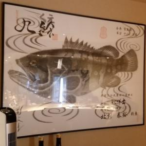★飲食店に飾られている大型クエ魚拓!