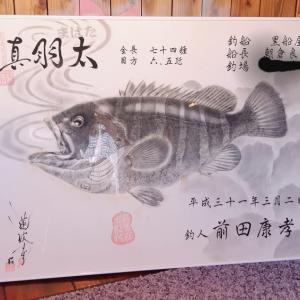 ★良型真羽太(マハタ)魚拓♪