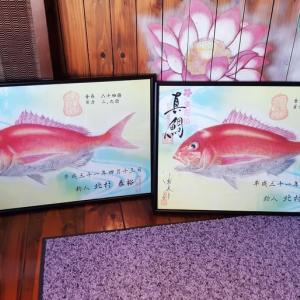 ★真鯛の色彩アート魚拓♪