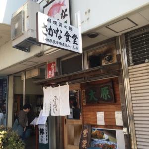 小田原 鯵フライの名店と紅葉。