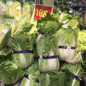 お買い得な白菜発見!とハヤシライス。