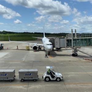 2021年6月 羽田空港第3ターミナル