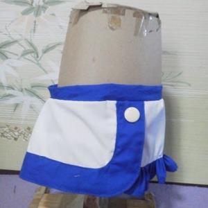 メイちゃんの RQ風スカートができました