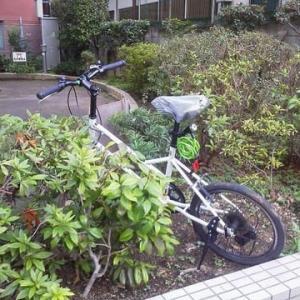 公園の自転車
