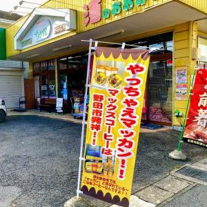 【野田名物】やっちゃえマッカン!!マックスコーヒーのアイス&シフォンケーキ・・・