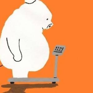 脂肪とストレス?