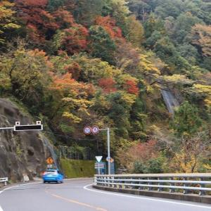 矢ノ川峠の紅葉風景(その4)最終回(撮影:11月27日)