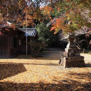 八柱神社の紅葉(その1)(撮影:11月30日)
