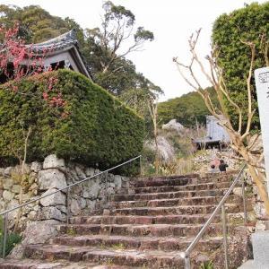 花の寺大蓮寺境内を散策(撮影:3月26日)