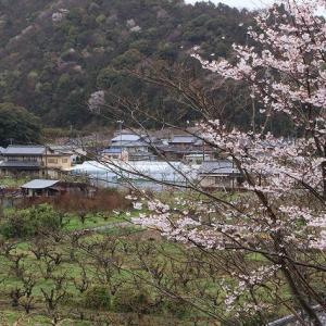 咢堂記念館への旅(撮影:3月29日)