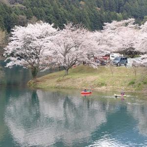大台町さくら巡り(その3)(撮影:3月27日)
