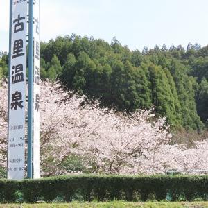 古里温泉・展望台散策(撮影:3月29日)