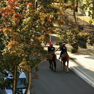騎馬隊の通るアヴェニュー
