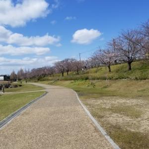 2020/03/29 寝屋川公園