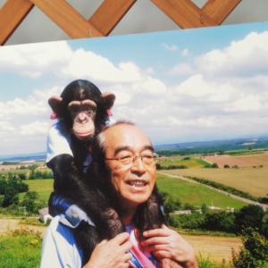 いちごがお気に入りなカドリー・ドミニオンで志村さんの展示がされていました