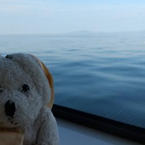 いちごはとハナちゃんは猫の島相島に行きました