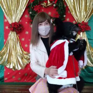 いちごとハナちゃんは熊本に行きました