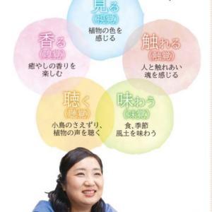 【夏の薬草ボール作り入門講座ワークショップ】募集8/9(月曜日)