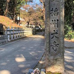 播州犬寺へGO