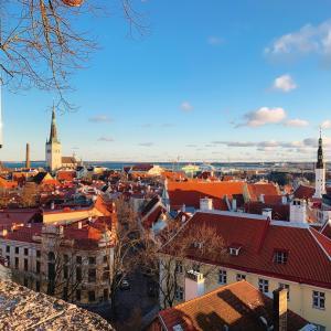 私がSNSで発信する意味〜エストニアからの学び〜