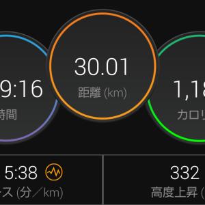 30kmジョグ