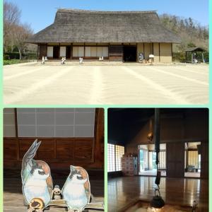 多摩湖・狭山湖散歩(前半)~武蔵大和駅から里山民家