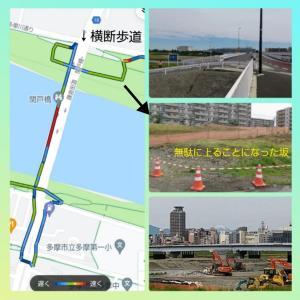 多摩川・羽田空港散歩~いよいよ多摩川を下る!