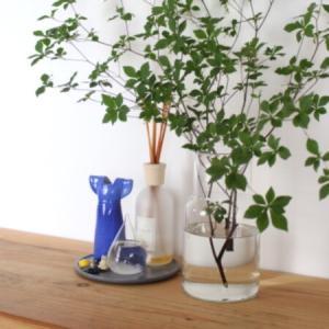 【コラム】玄関収納の3つのポイント&我が家の香りのお買い物