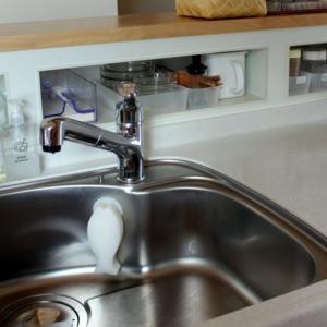 キッチンスポンジの一番シンプルな収納、おさかなスポンジ愛用者にうれしい新商品!
