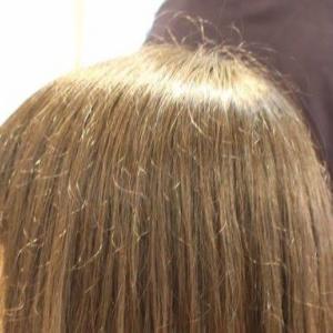 頭頂部のチリ毛・・・の巻