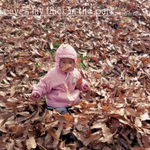 落ち葉に囲まれて