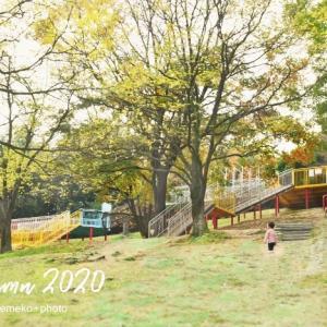 公園で秋を満喫しています。