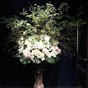 トゥールダルジャンが「半沢直樹」に!