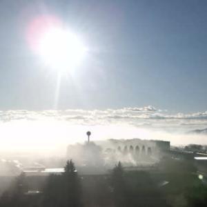 霧が生まれる /フェルト猫を作る