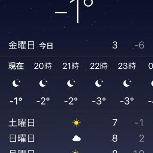 12月韓国旅行/東横イン江南/イチゴ歯磨き/おひとり様OKのえびマンドゥ