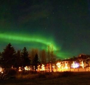 2021年あけましておめでとうございます!今年はアイスランド旅行の計画を!