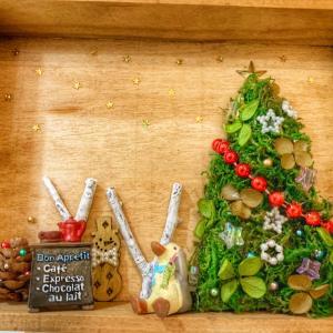 今年のクリスマスデコレーション❤︎今日はクリスマスツリーの日