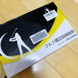 ゴルフ練習器具またまた、買いました(笑)