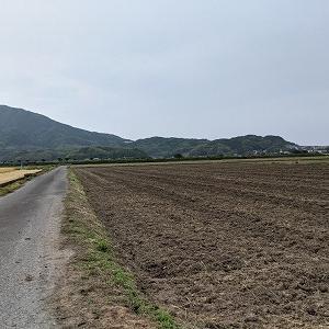 梅雨入りが間近な糸島です。