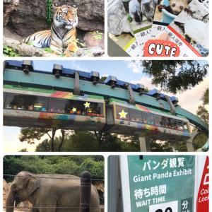 上野動物園♪ パンダ&モノレールラストラン&昭和思い出