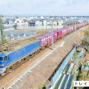 成人の日の貨物列車など