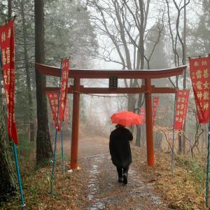 【お兄ちゃんの記事】雨と池と神社と……