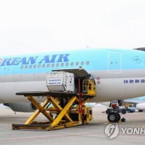 嬉しいニュース!大韓航空の仁川―大阪線 半年ぶりに運航再開へ